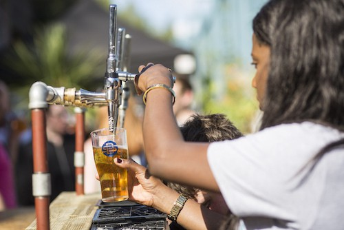 beer craft brewery