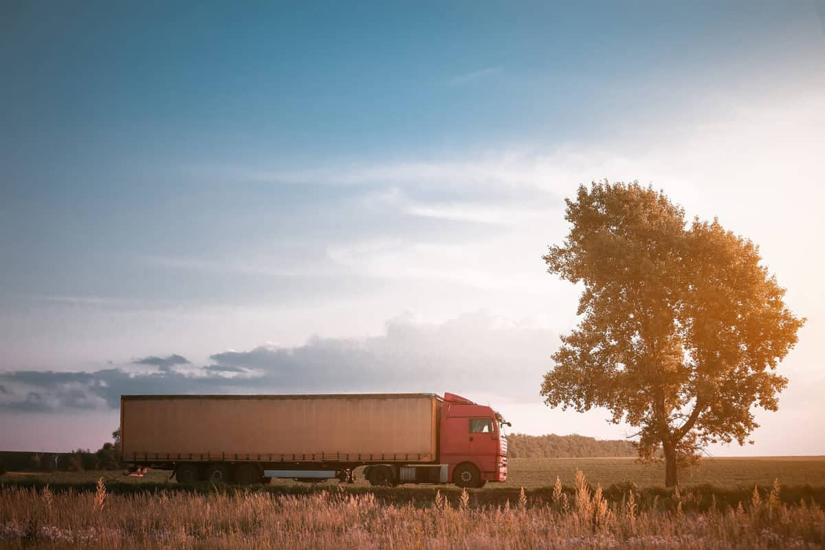 Keeping Your Supply Chain Sustainable featured image