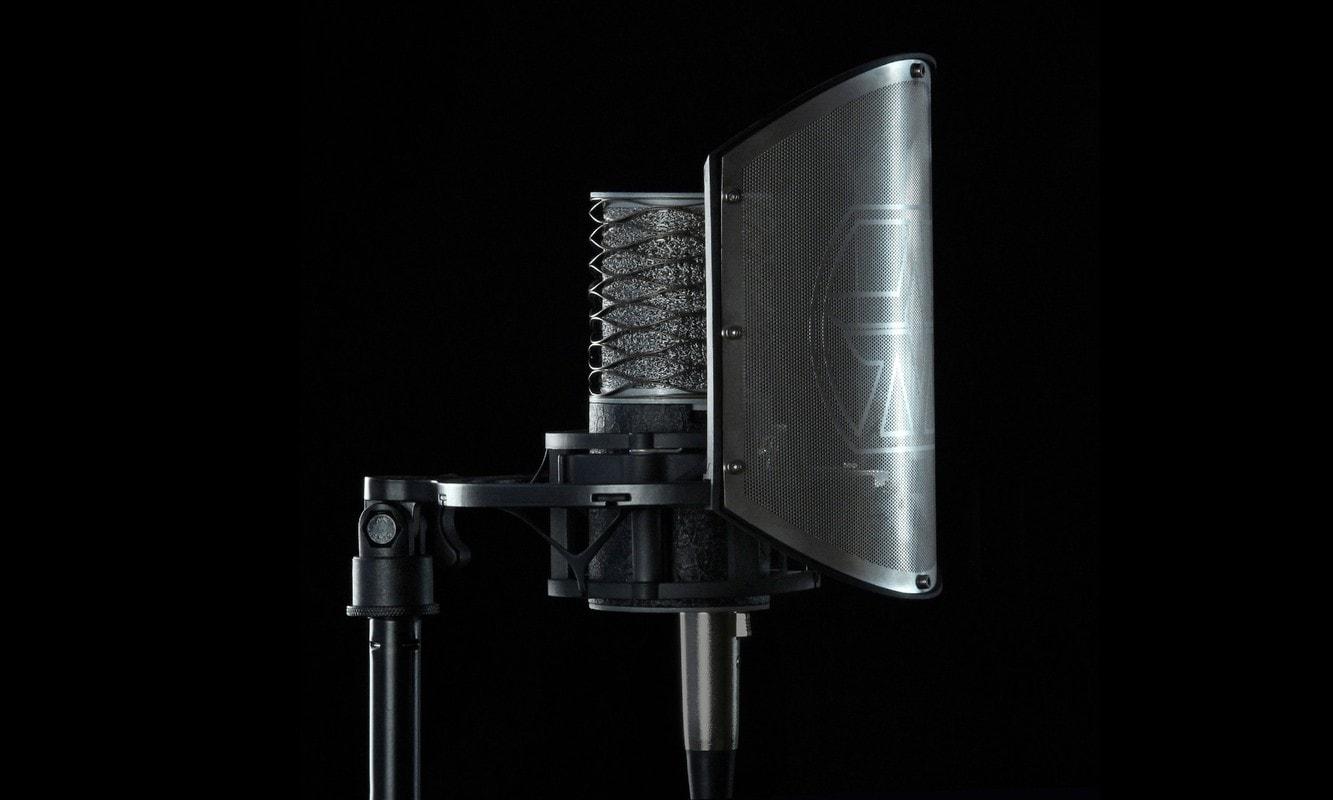 Aston Mic shield
