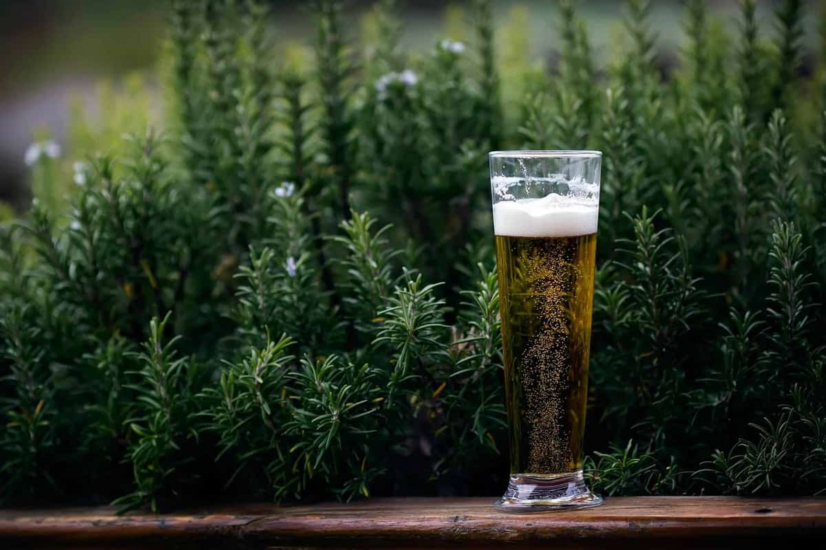 Global Craft Beer Industry Performance: The Ultimate Guide featured image