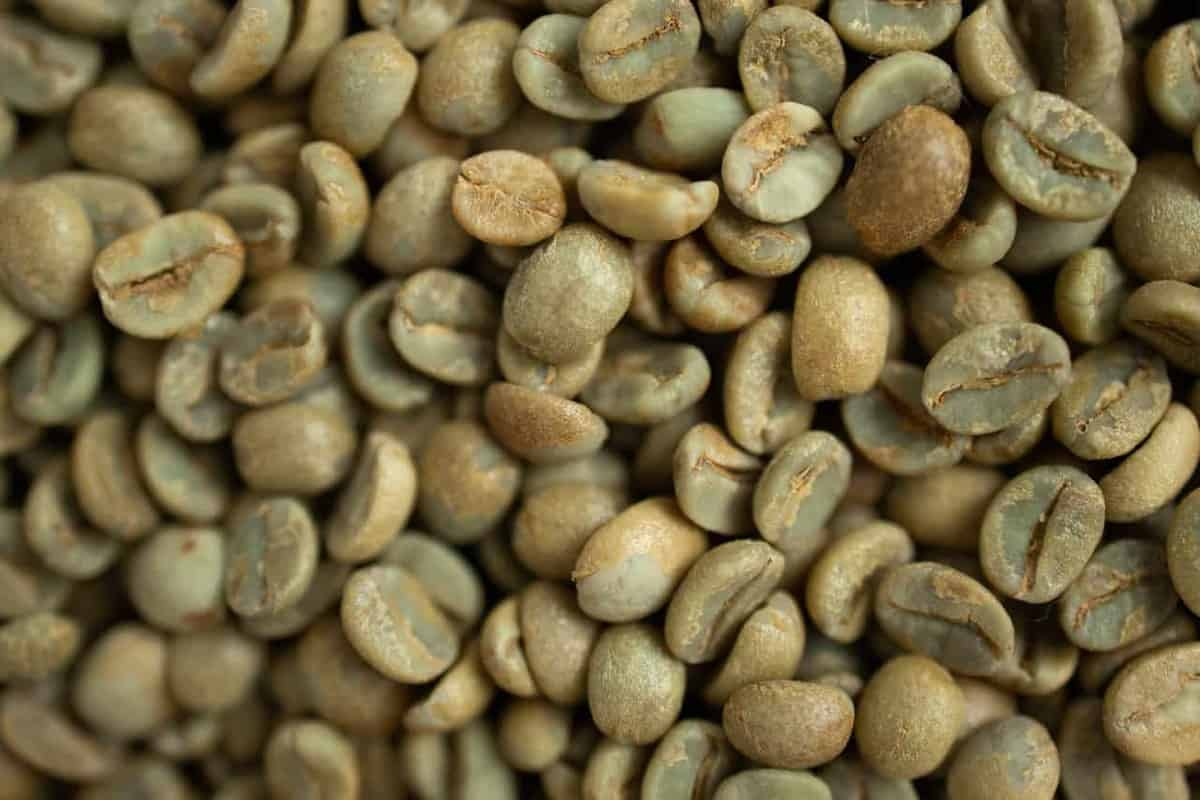 The Key Coffee Industry Trends For 2021 & Beyond featured image